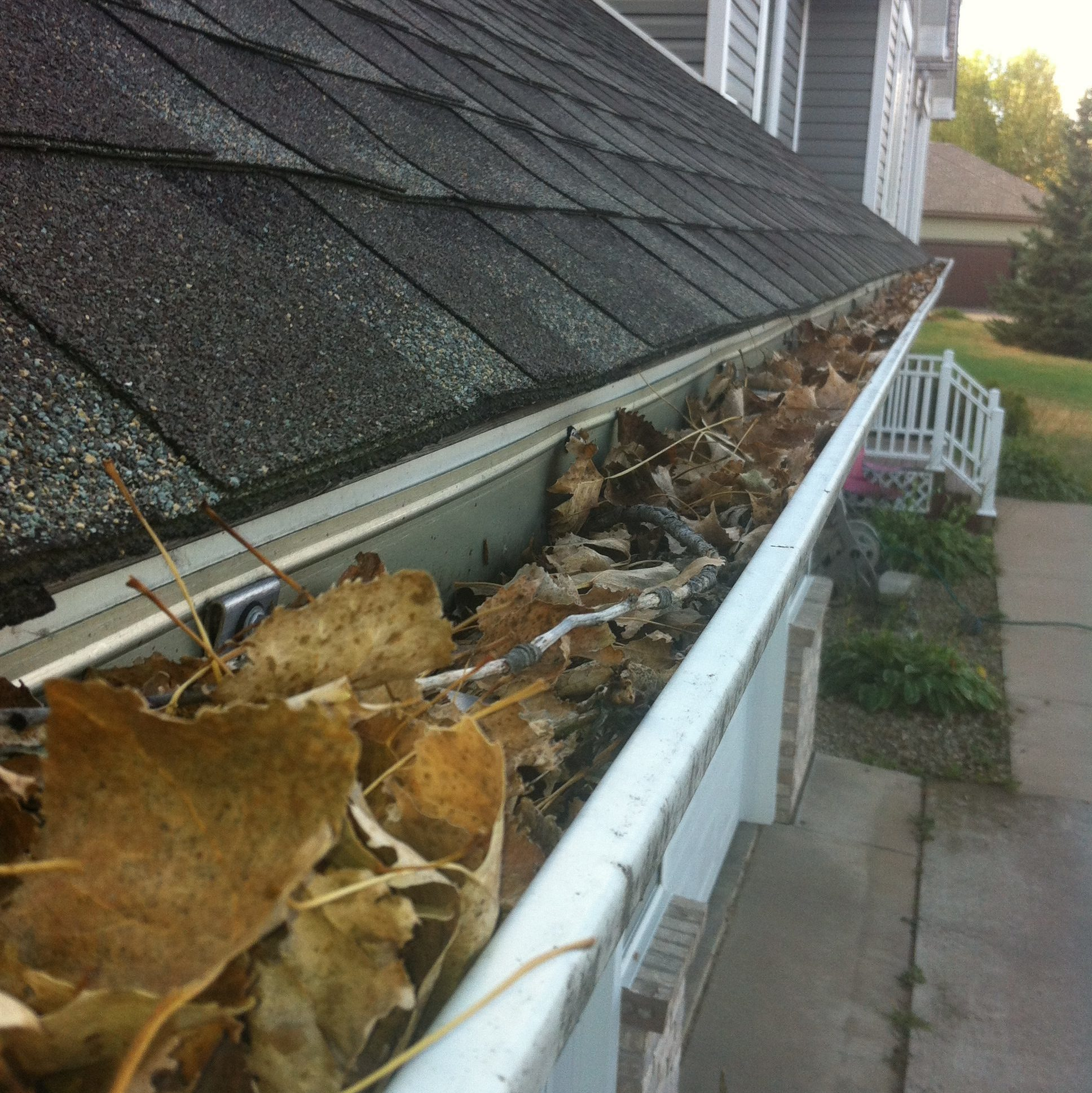 St. Paul and Minneapolis MN window cleaning and washing services